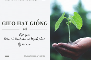 Gieo Hat Giong