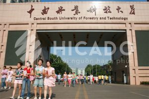 Đại học Lâm nghiệp Trung Nam