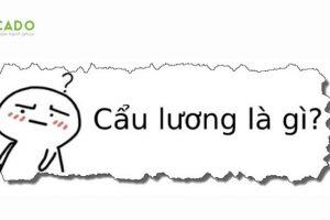 Cau Luong La Gi